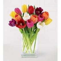 one dozen tulips vase in philippines