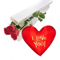 Red Roses Box with Wesley Heart Shaped Pillow Delivery To Philippines